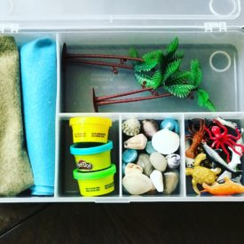 Learn how to organize and pack for a simple, stress free road trip. Ideas for packing clothes, toiletries, medication, snacks and entertainment items.